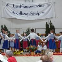 Landfrauentag 2015 in dossenheim 036