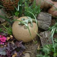 Garten Frau Hauk 11.6.14 010