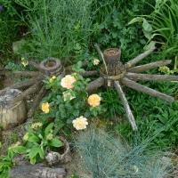 Garten Frau Hauk 11.6.14 026