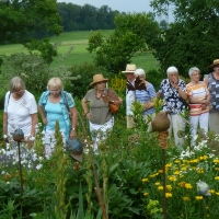 Garten Frau Hauk 11.6.14 027