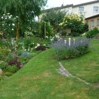 Garten Frau Hauk 11.6.14 032