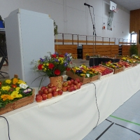 Landfrauentag 2015 in dossenheim 005