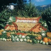 Vielfalt der einheimischen Produkte unserer Region