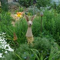 Garten Frau Hauk 11.6.14 031