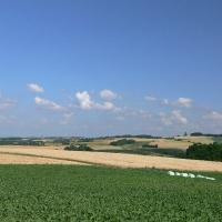 Gemarkung Eschelbach