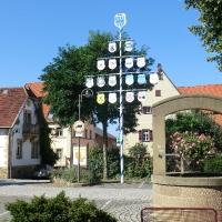 Vereinsbaum mit Wappen der LF (1)