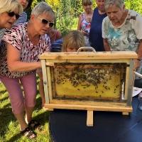 Bienenschautafel